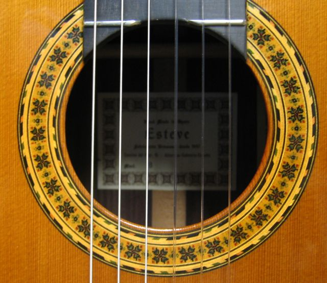 Photo of Rosette of Esteve 8 Classical Guitar