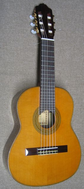 Photo of Octave Classical Guitar by Esteve
