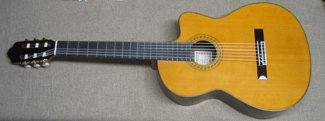 Photo of R.Fernandez 70 Cutaway Guitar